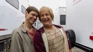 Dumb and Dumber To 2014, filme online subtitrat în Română