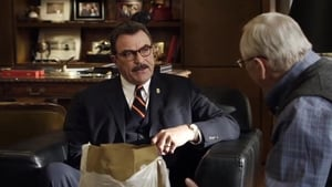 Blue Bloods season 1 Episode 19