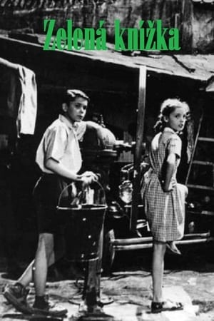 The Green Notebook (1948)