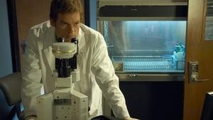 Dexter 5. Sezon 7. Bölüm izle