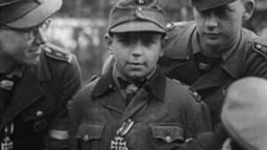 Nemesis (February–May 1945)