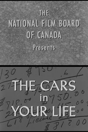 The Cars in Your Life