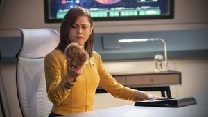 Star Trek: Discovery Season 0 :Episode 10  Short Treks: The Trouble with Edward