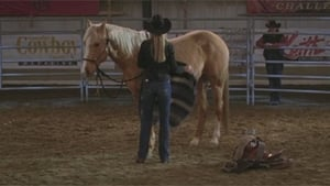 Heartland Season 3 :Episode 17  Ring of Fire