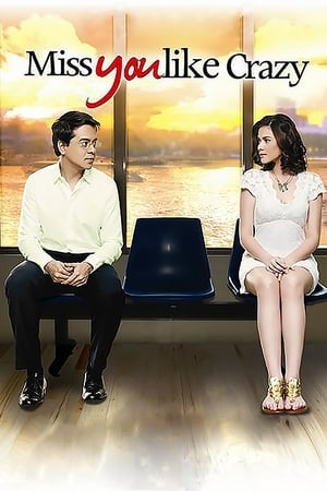 Miss You Like Crazy (2010)