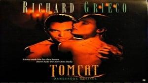 Captura de Tomcat: Dangerous Desires