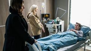 Zakochani po uszy Season 5 :Episode 40  Episode 40
