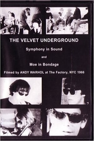 A Symphony of Sound: The Velvet Underground & Nico 1966