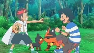 Pokémon Season 22 : A Timeless Encounter!