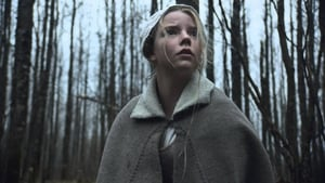 Ver La bruja (The Witch) (Online) 2016