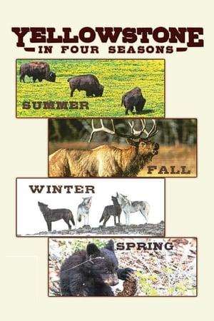 Yellowstone in Four Seasons (2017)
