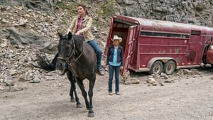 Heartland Season 10 : Together, and Apart
