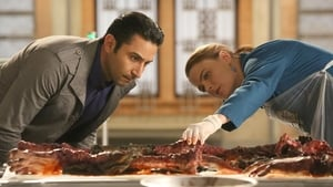 Bones Season 11 : The Doom in the Boom