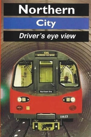 Northern Line (City) - Driver's Eye View