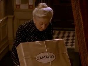 The Cardboard Box