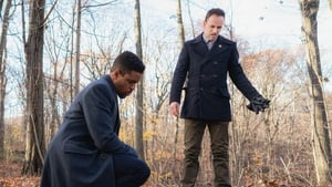 Elementary Season 5 :Episode 12  Crowned Clown, Downtown Brown