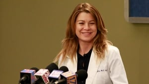 Grey's Anatomy Season 13 :Episode 21  Don't Stop Me Now
