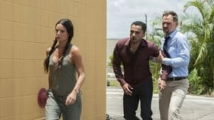 Burn Notice saison 7 episode 9