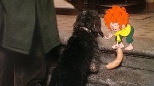 Der rätselhafte Hund