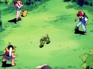 Pokemon 1X4 Online Subtitulado