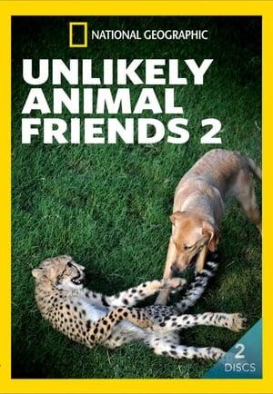 Unlikely Animal Friends. Vol. 2