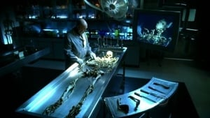 CSI-19 down