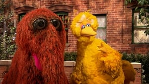 Sesame Street Season 49 :Episode 17  Fixing X