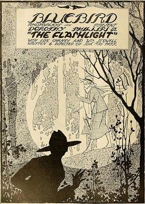 The Flashlight (1917)