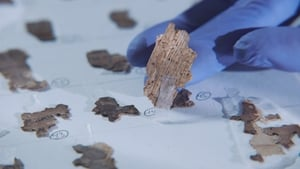 Dead Sea Scroll Detectives