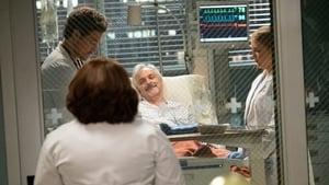 Grey's Anatomy Season 16 :Episode 2  Back in the Saddle