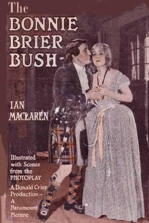 The Bonnie Brier Bush (1921)