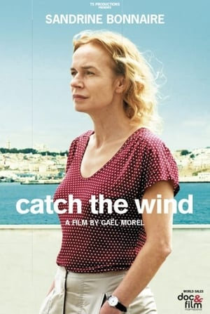 Catch the Wind (2017)