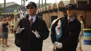 NCIS Season 2 :Episode 18  Bikini Wax