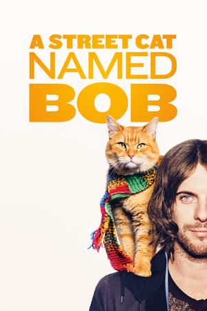 Un motan numit Bob