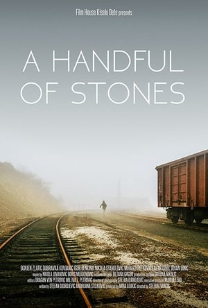 A Handful of Stones (2017)