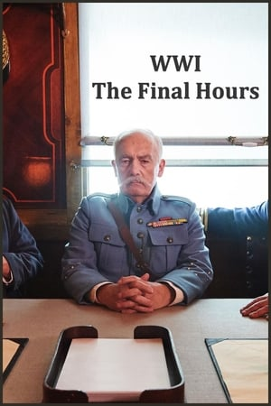 WWI: The Final Hours
