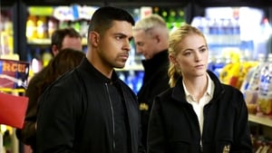 NCIS Season 14 :Episode 7  Home of the Brave