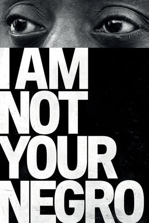 Watch I Am Not Your Negro Full Movie