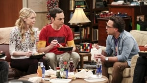 The Big Bang Theory Season 10 :Episode 24  The Long Distance Dissonance