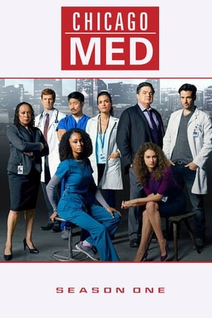 Baixar Serie Chicago Med 1ª Temporada (2015) HDTV 720p Legendado Download Torrent