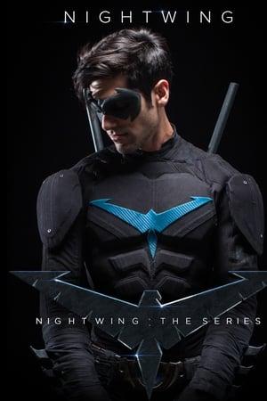 Nightwing: The Series 1×1