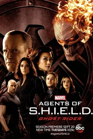 Baixar Serie Agents of S.H.I.E.L.D. 4ª Temporada Legendado via Torrent