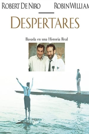 Despertares (1990)