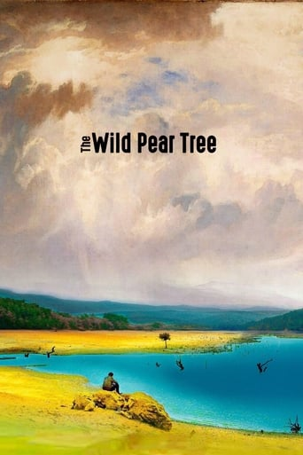 watch The Wild Pear Tree free online 2018 english subtitles HD stream