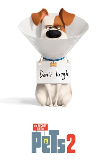 watch The Secret Life of Pets 2 free online 2019 english subtitles HD stream