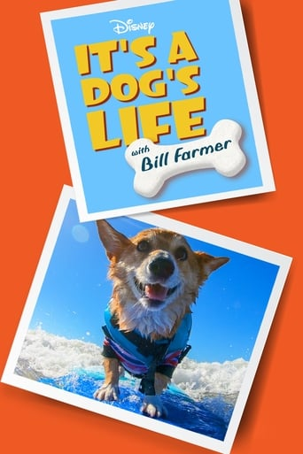 Image It's a Dog's Life with Bill Farmer - Season 1