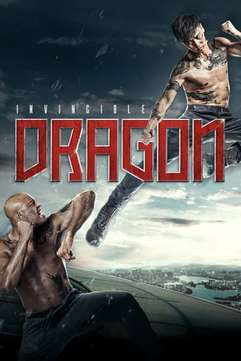 Poster of The Invincible Dragon