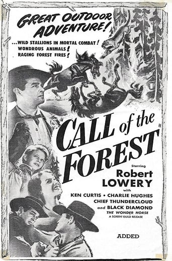 Poster of Call of the Forest