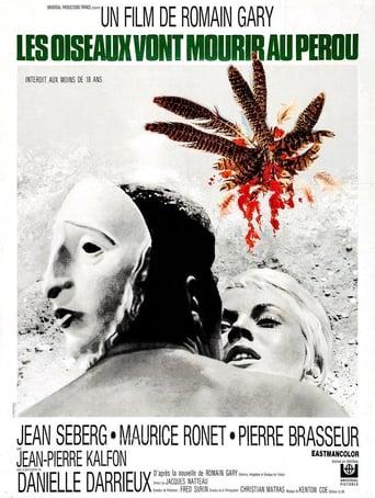 Poster of Birds in Peru