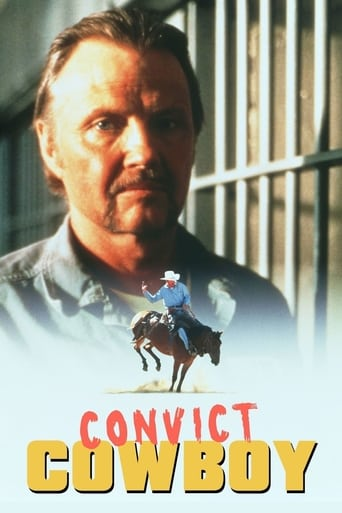 Poster of Convict Cowboy